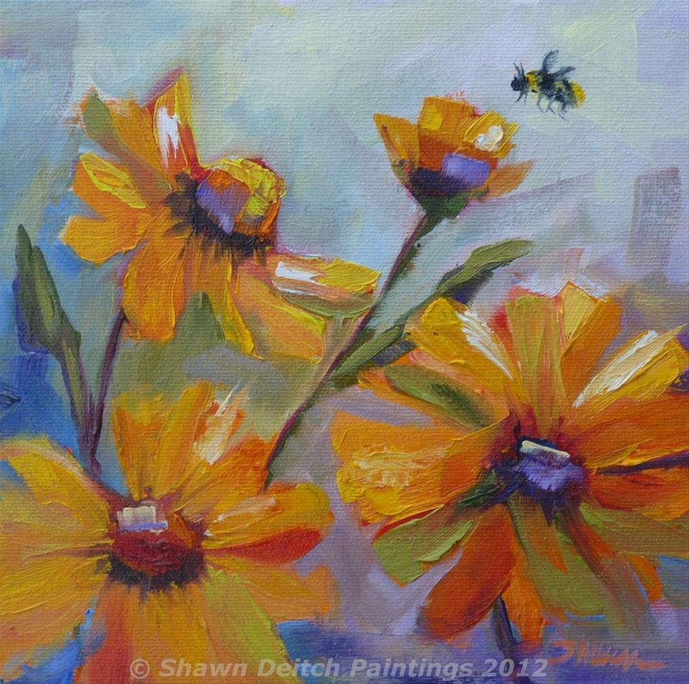 """Brittlebush Bee"" original fine art by Shawn Deitch"