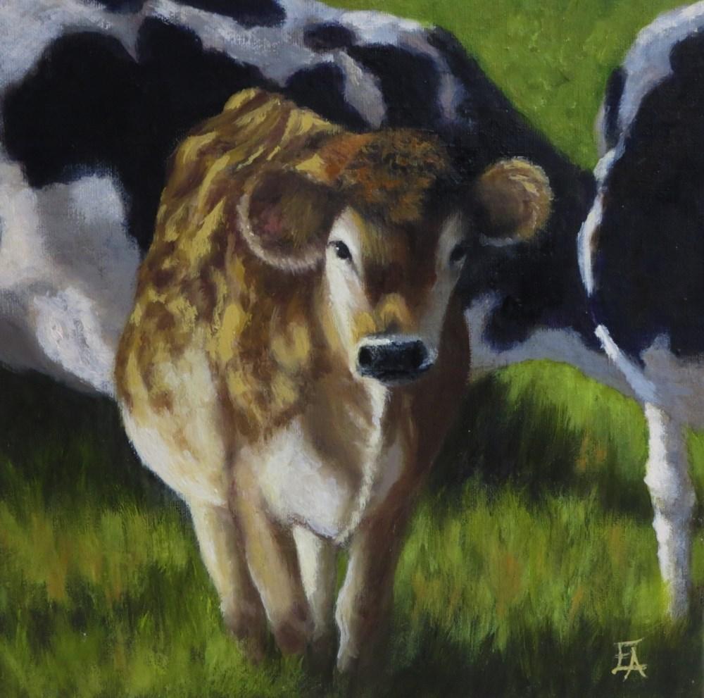 """Sun Dappled Cow"" original fine art by Elizabeth Elgin"