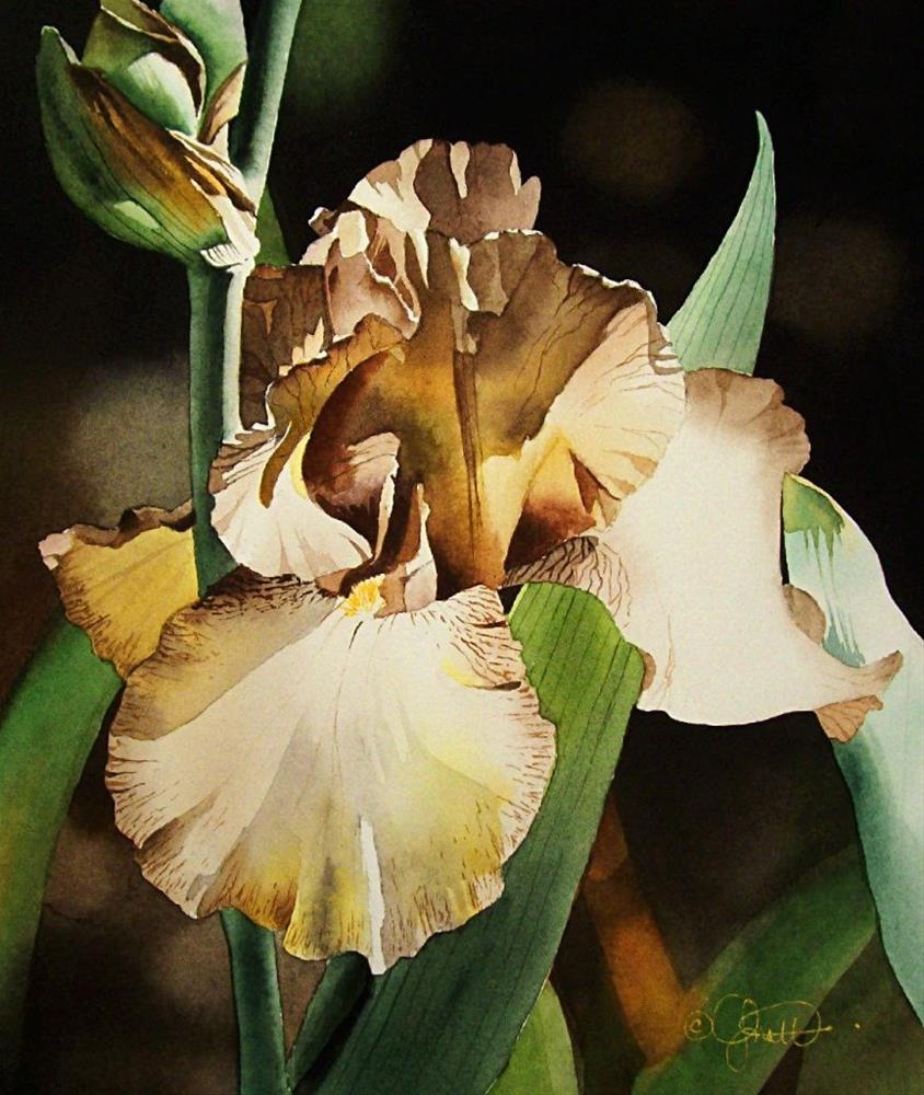 """Copper and Yellow Iris"" original fine art by Jacqueline Gnott, whs"