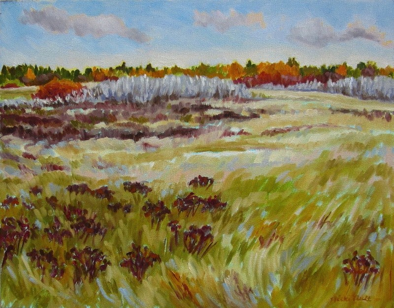 """Fall Palette at the Grasslands"" original fine art by Nicki Ault"