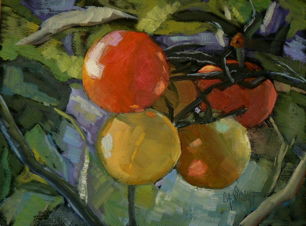 """Daily Painting, 6x8 Original Oil Still Life Cindy Grows Tomatoes"" original fine art by Carol Schiff"