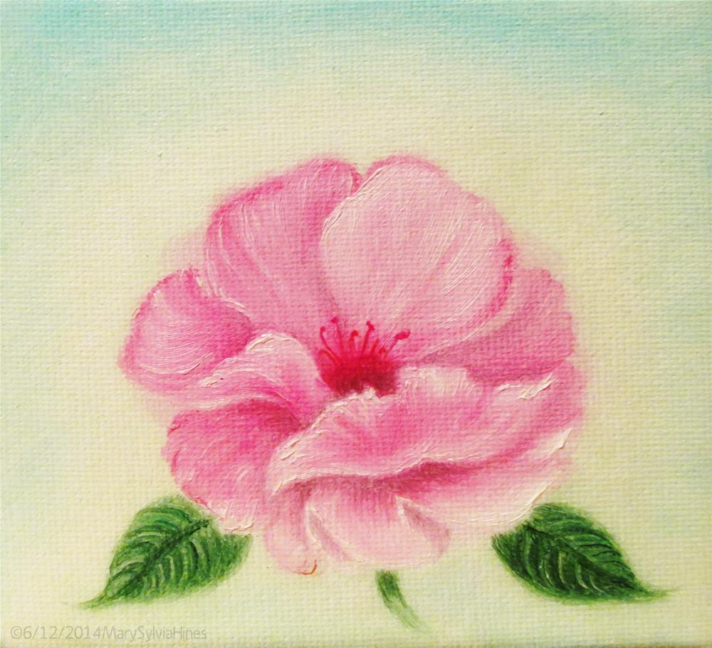 """Pink Rose Study v2"" original fine art by Mary Sylvia Hines"