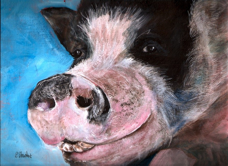 """Kaylee, 9x12 Acrylic Painting, Adorable Pig with Personality and Attitude"" original fine art by Penny Lee StewArt"