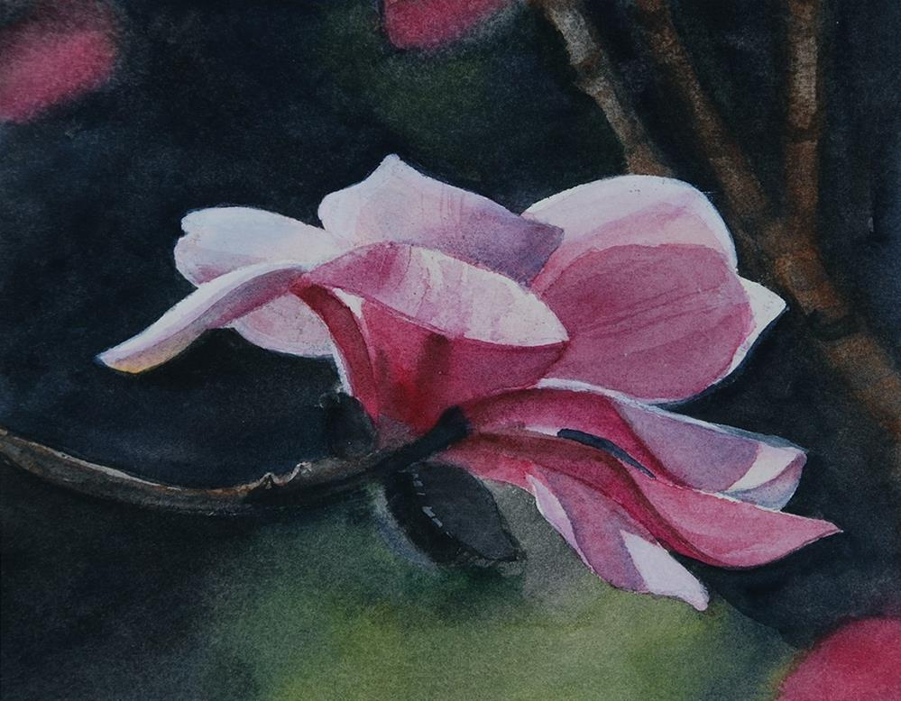"""Magnolia"" original fine art by Mary Anderson"