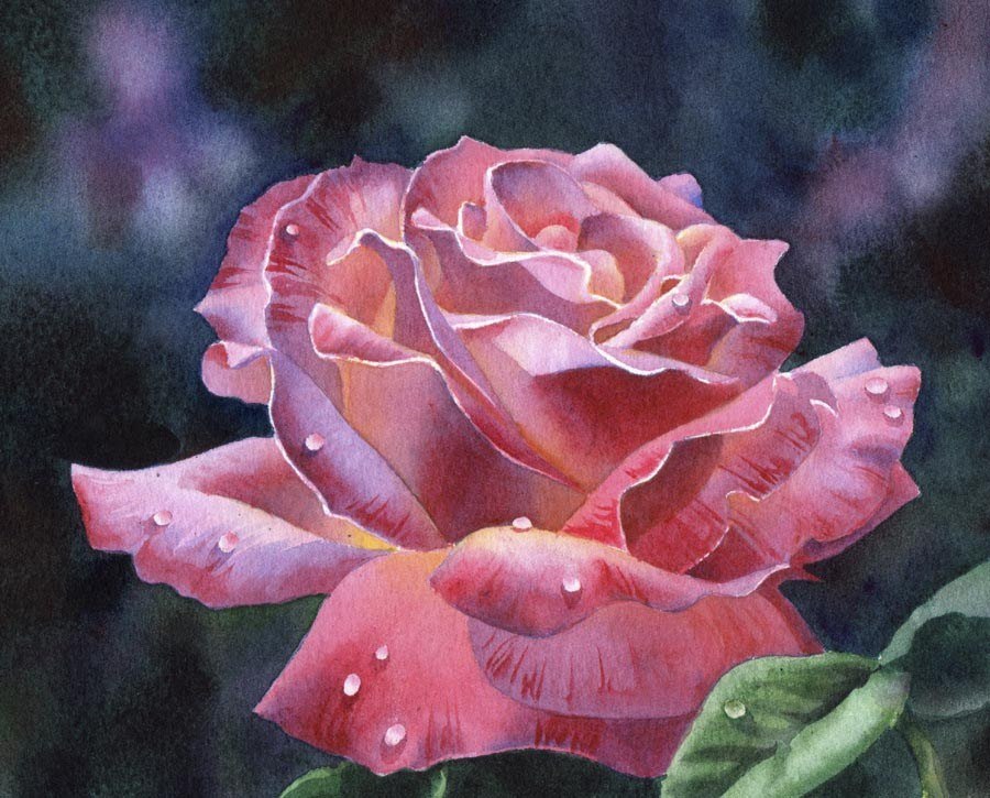"""DEW DROPS ON ROSES watercolor floral painting"" original fine art by Barbara Fox"