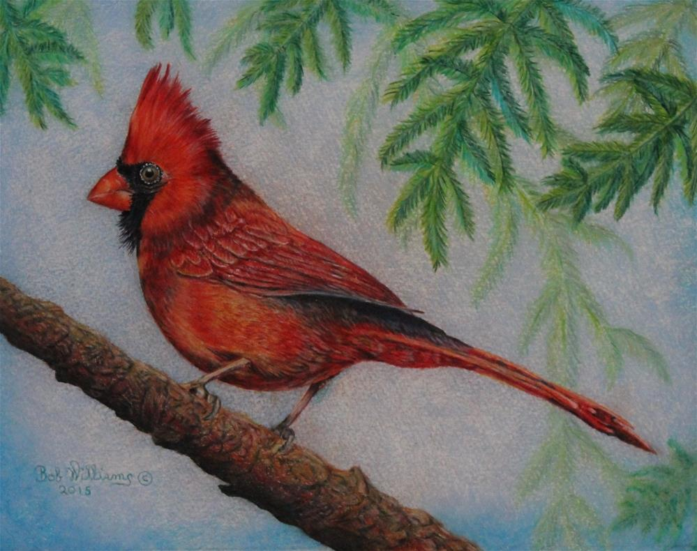 """The Young Cardinal"" original fine art by Bob Williams"