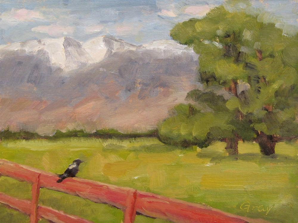"""Bird on the Fence"" original fine art by Naomi Gray"