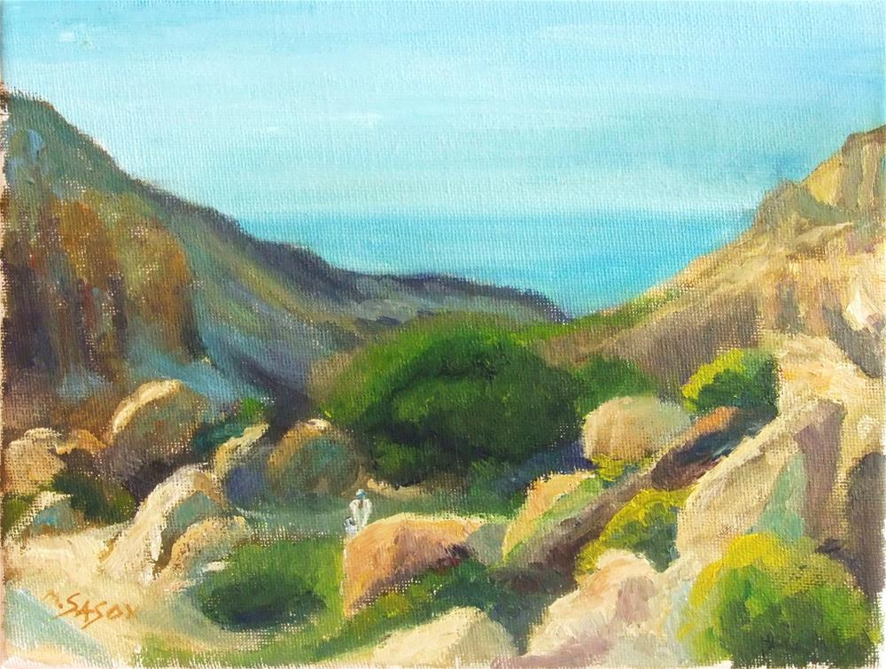 """Wadi David"" original fine art by Michael Sason"