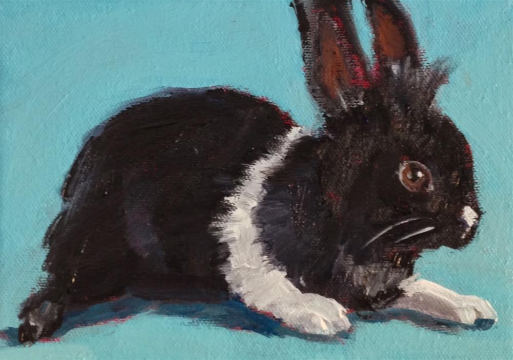 """Tuxedo Bunny, 5x7 Inch Acrylic Painting by Kelley MacDonald"" original fine art by Kelley MacDonald"