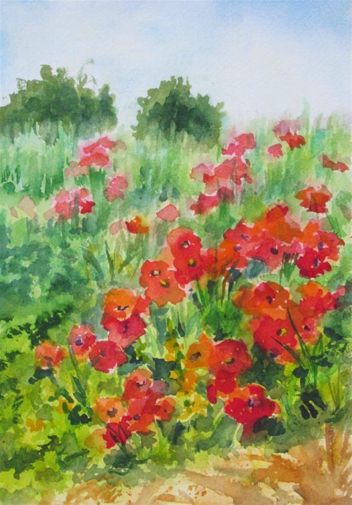 """""""Poppies Gone Wild 1"""" original fine art by Pat Fiorello"""