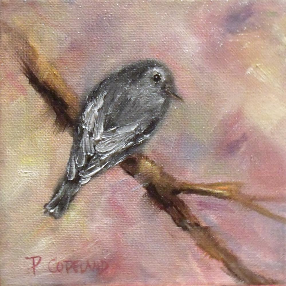 """Gray Gnatcatcher"" original fine art by Pamela H. Copeland"