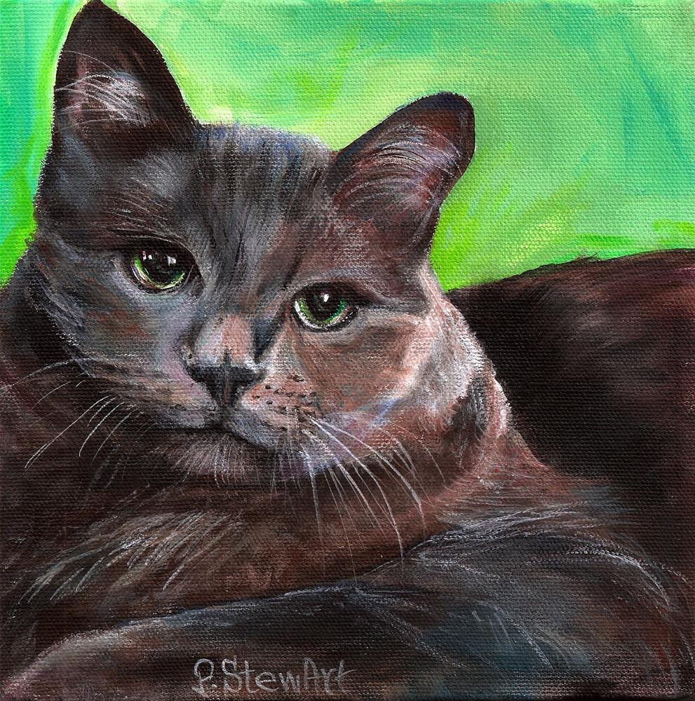 """8x8 Tony's Cat, acrylic on a canvas with an edge painted all around"" original fine art by Penny Lee StewArt"