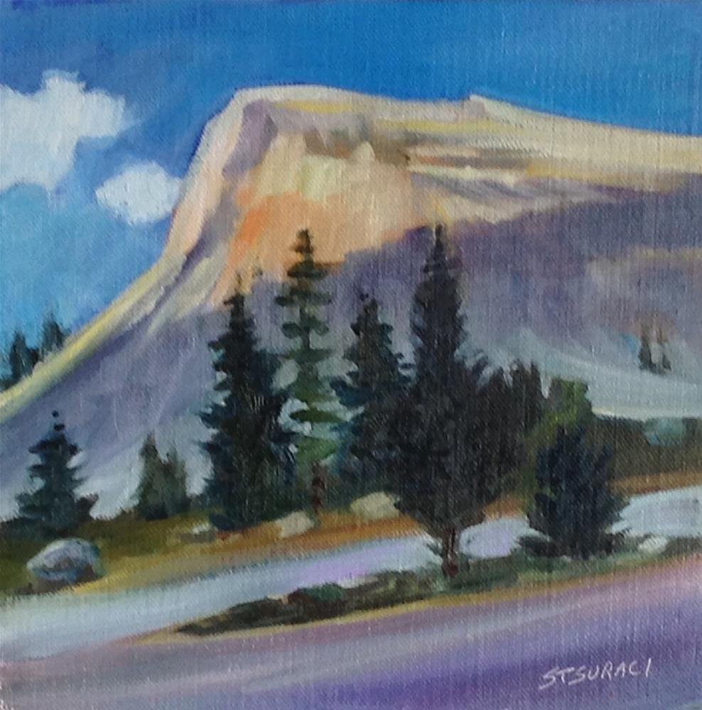 """Inside Yosemite"" original fine art by Susan Suraci"
