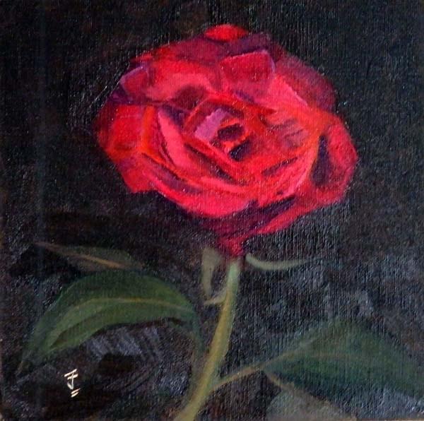 """Birthday Rose"" original fine art by Jane Frederick"