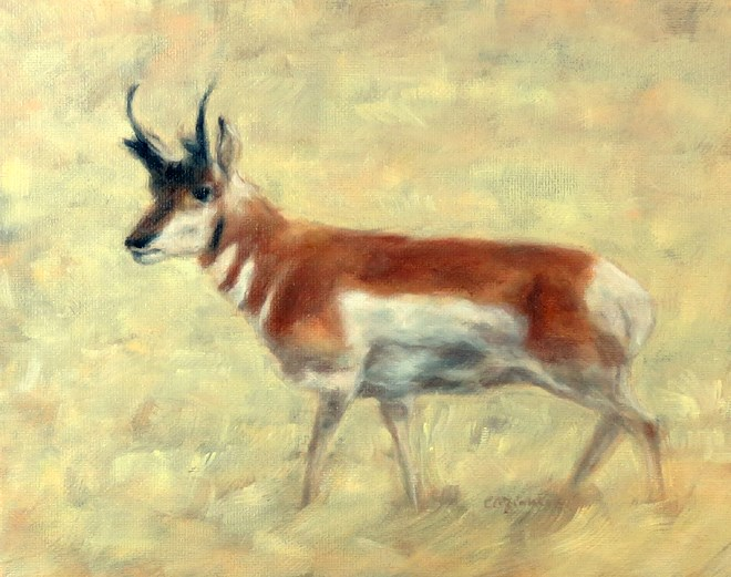 """Watchful Eye"" original fine art by Carol Zirkle"