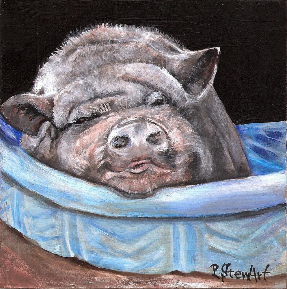 """""""6x6 Pig Newton a Pot Bellied Pet Pig Portrait by Penny StewArt"""" original fine art by Penny Lee StewArt"""