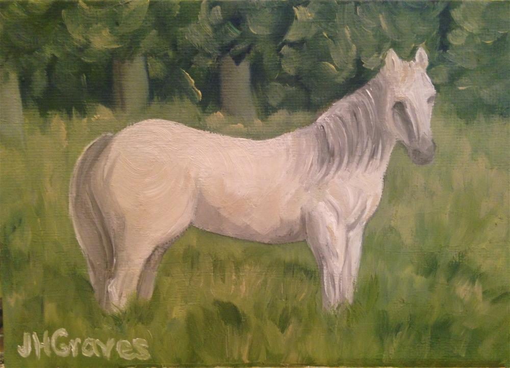 """White Horse"" original fine art by J H Graves"