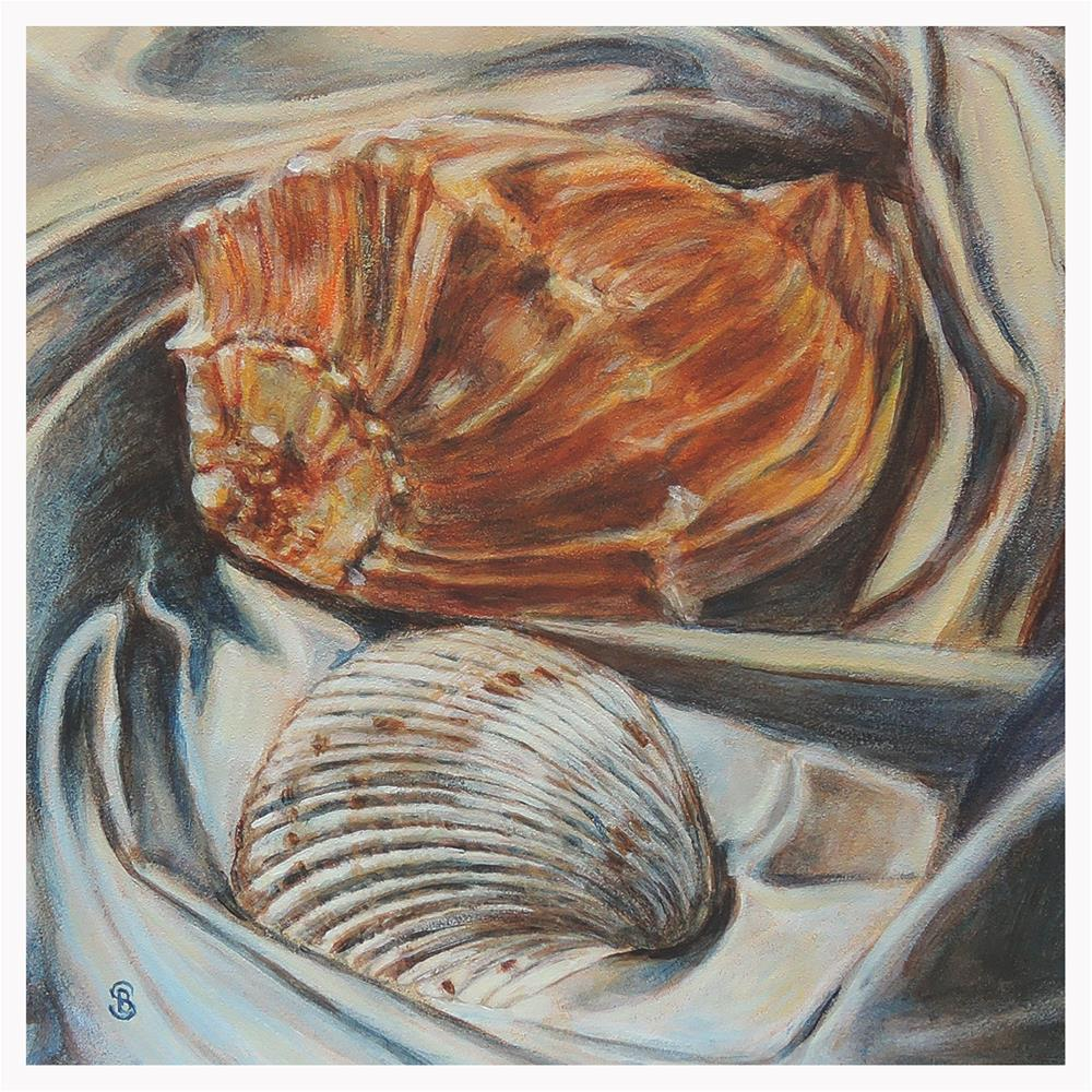 """Orange Whelk and Scallop Shell"" original fine art by Belinda Scheber"