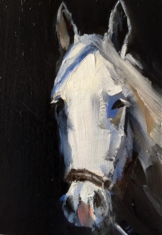 """White Horse"" original fine art by Gary Bruton"