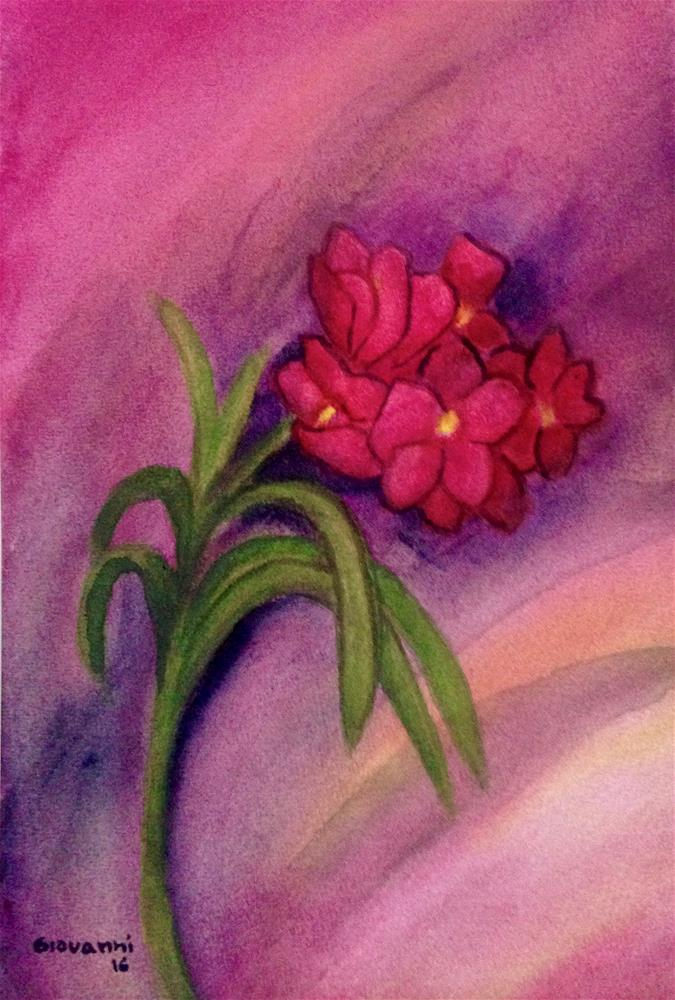 """Red/Pink Wild Orchid"" original fine art by Giovanni Antunez"