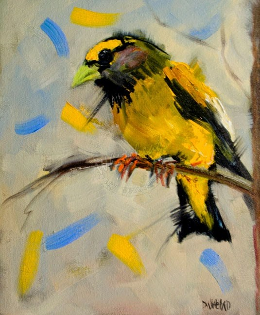"""ARTOUTWEST EVENING GROSBEAK BIRD ART OIL PAINTING BY ARTIST DIANE WHITEHEAD"" original fine art by Diane Whitehead"