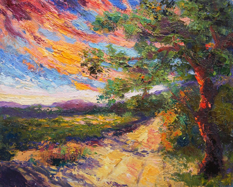 """Sunset in the vineyard, Provence"" original fine art by Marion Hedger"