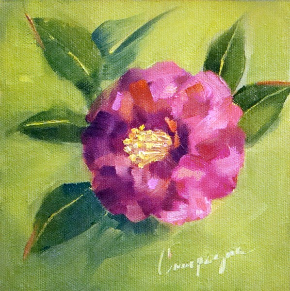 """Christmas Camellia"" original fine art by Roseanne Campagna"
