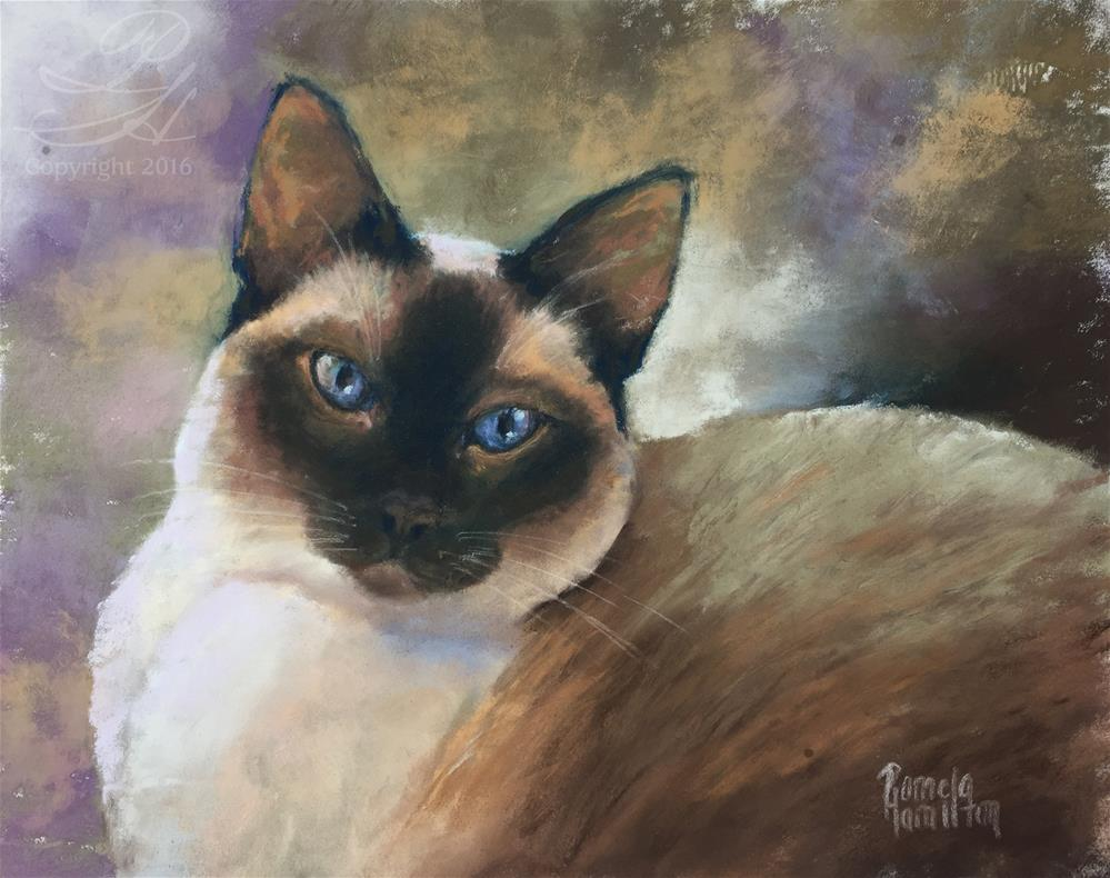 """Blue-eyed Boy"" original fine art by Pamela Hamilton"