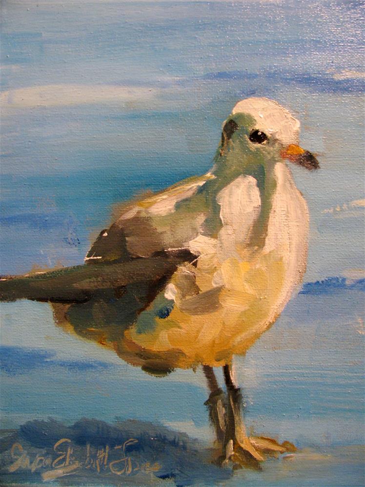 """Gull"" original fine art by Susan Elizabeth Jones"