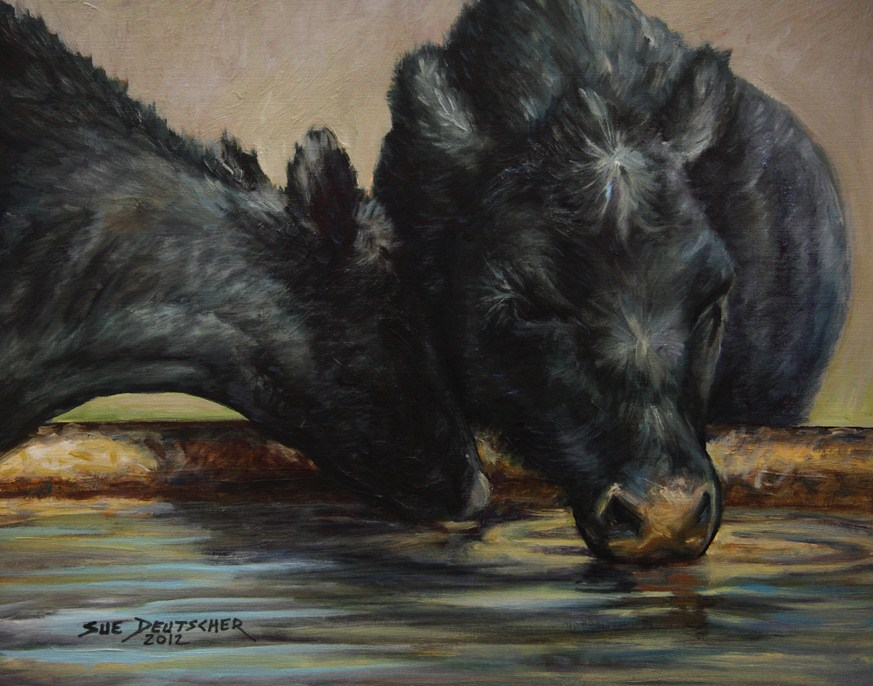 """Two Black Angus Drinking"" original fine art by Sue Deutscher"
