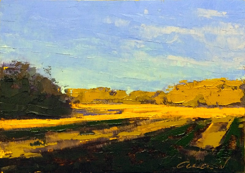 """Fields in Spring Light"" original fine art by Mary Gilkerson"