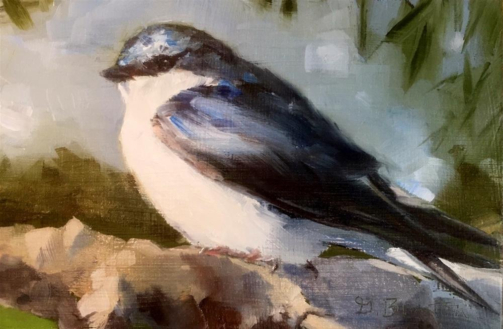"""Tree Swallow, Sunlit"" original fine art by Gary Bruton"