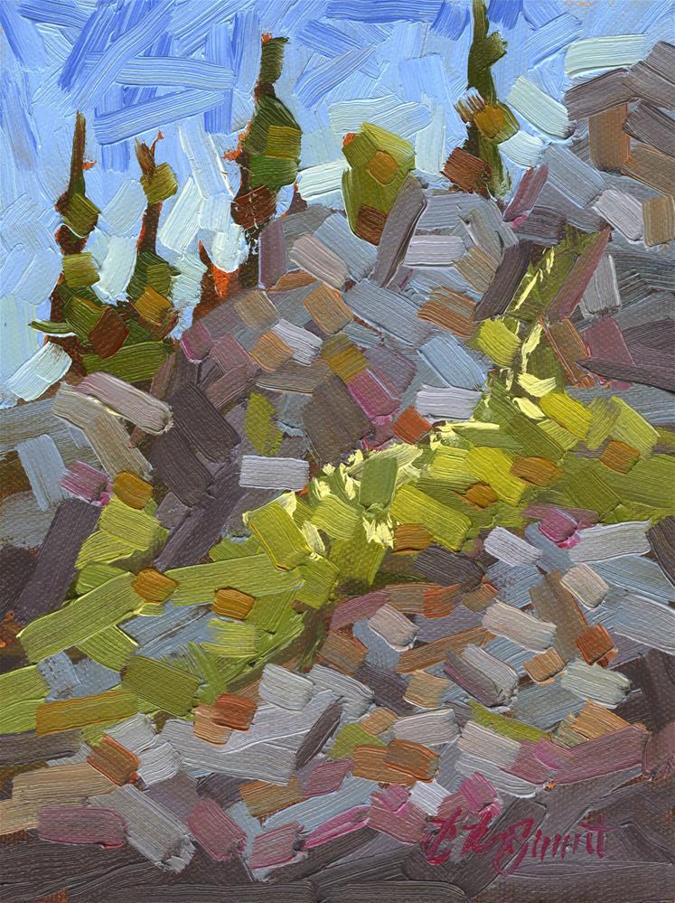 """Mission Clifs"" original fine art by B. Rex Stewart"