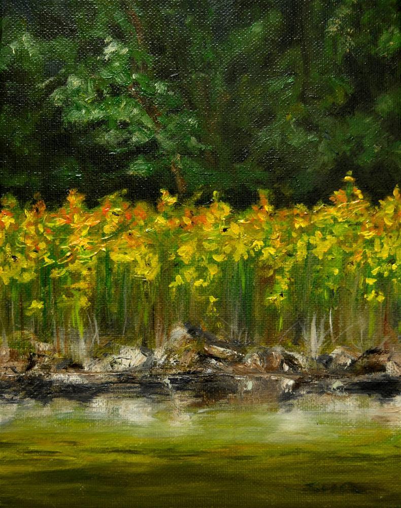 """yellow Daffodils"" original fine art by Sun Sohovich"