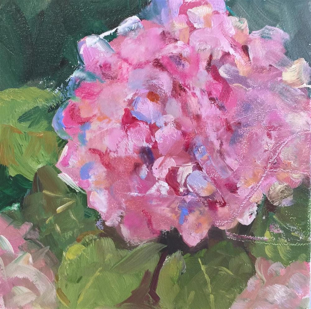 """Pink Hydrangea"" original fine art by Linda Dunbar"