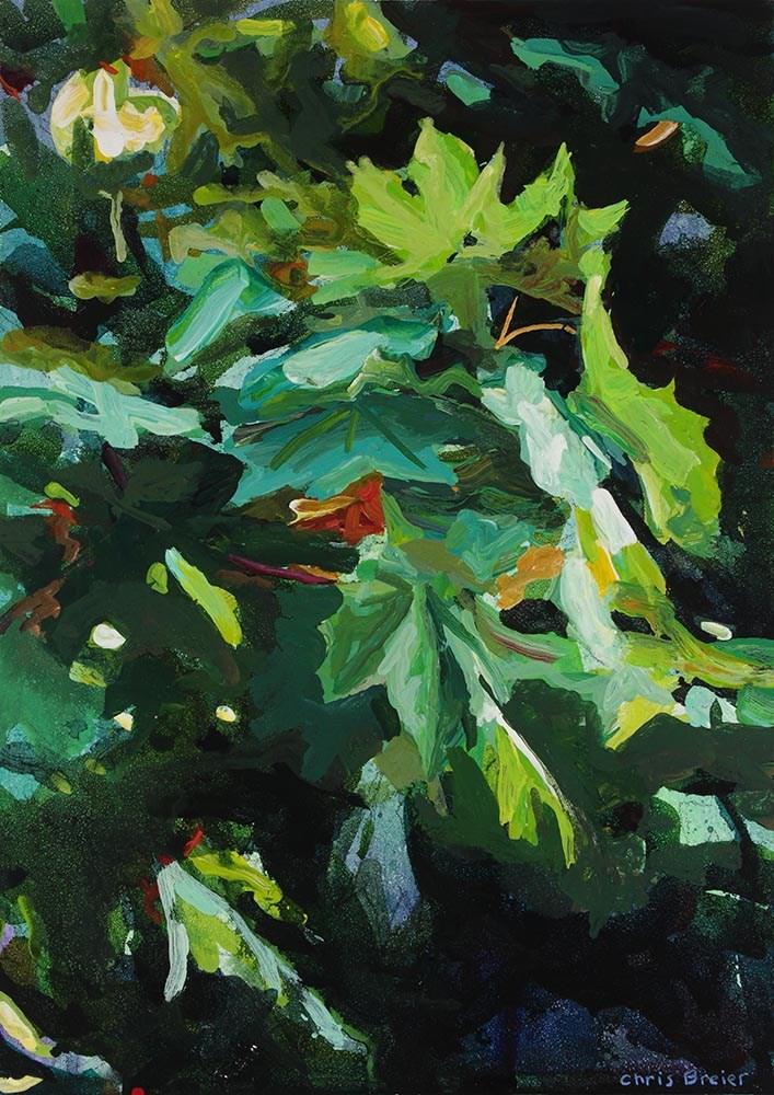 """Maple"" original fine art by Chris  Breier"