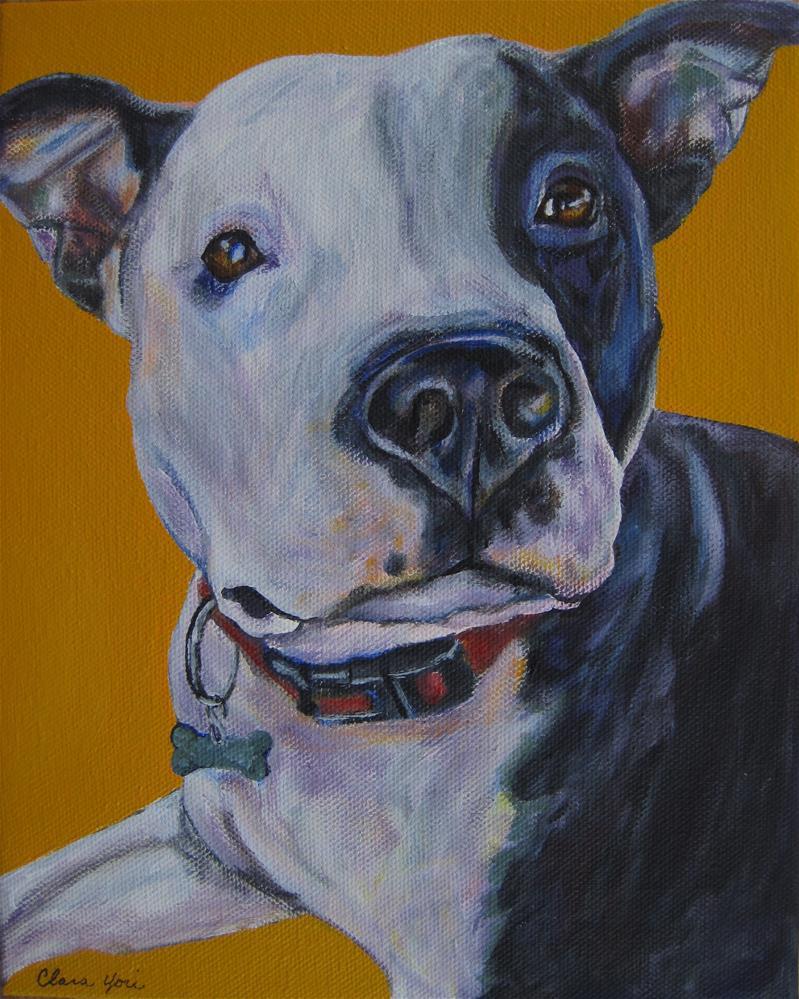 """Bailey"" original fine art by Clara Yori"
