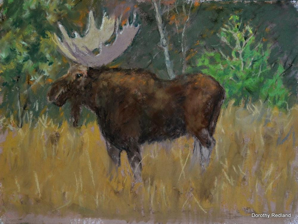 """The Big fellow"" original fine art by Dorothy Redland"