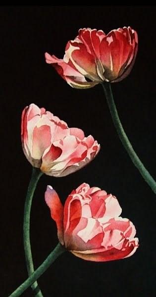"""Three Tulips"" original fine art by Jacqueline Gnott, whs"
