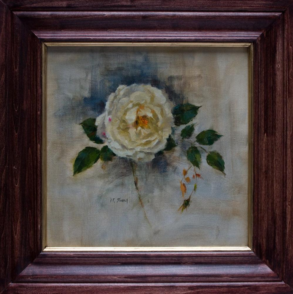 """White Rose"" original fine art by Donna C Farrell"