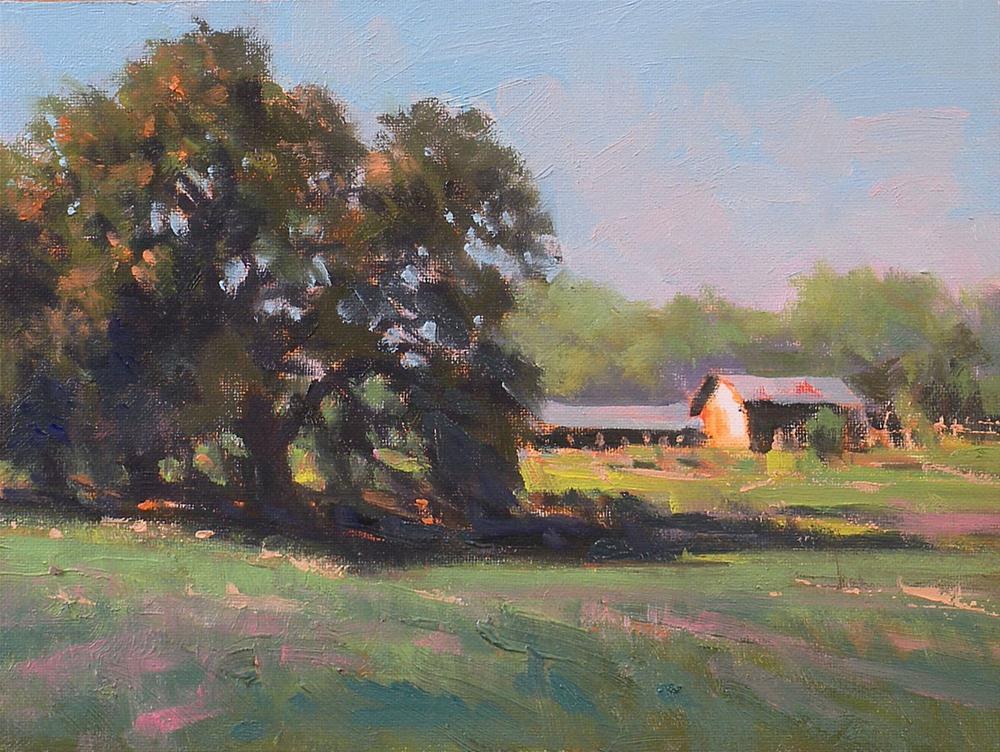 """""""Late Afternoon near Hallettsville"""" original fine art by David Forks"""