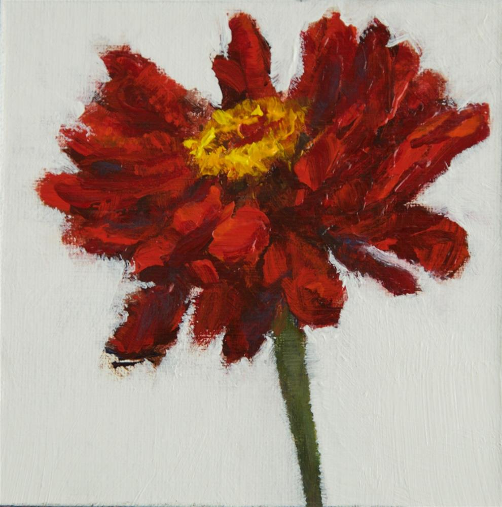 """Red Zinnia"" original fine art by Chantel Barber"