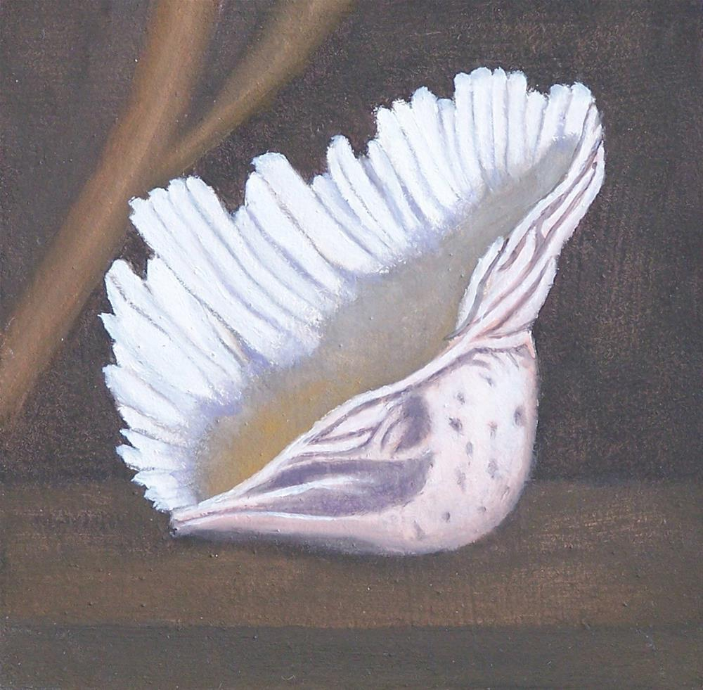 """pink Seashell"" original fine art by John Marcum"