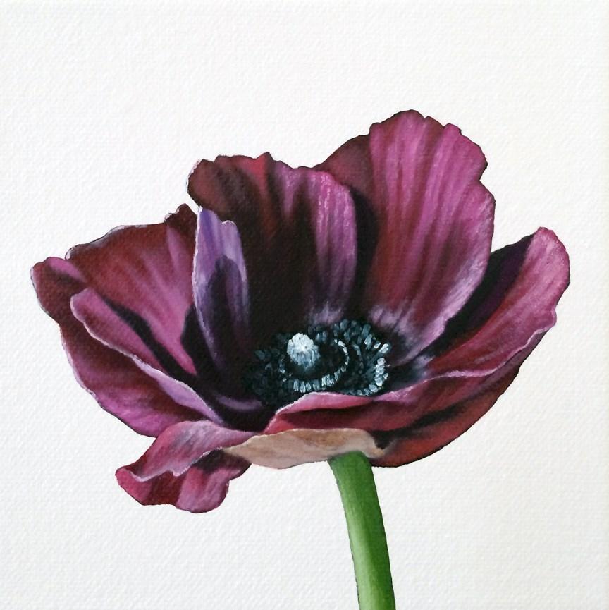 """Anemone I"" original fine art by Jelaine Faunce"