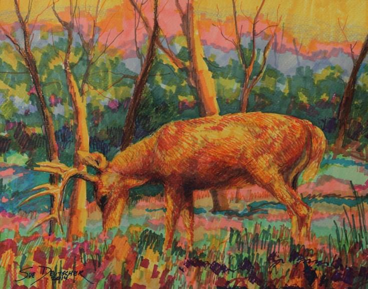 """Deer"" original fine art by Sue Deutscher"