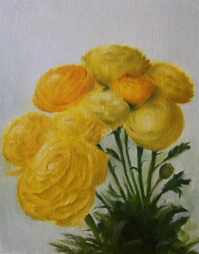 """Yellow Ranunculus"" original fine art by Jonathan Aller"