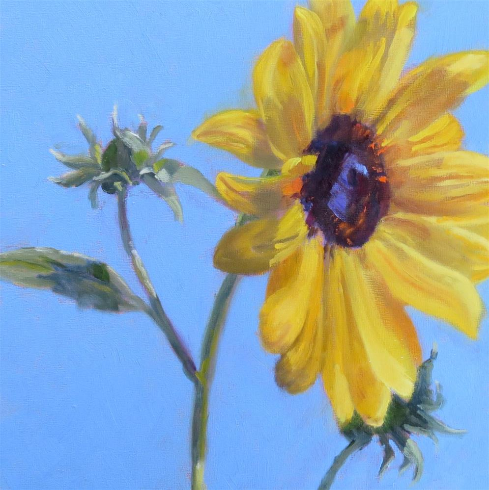 """Summer Sun"" original fine art by Pam Holnback"