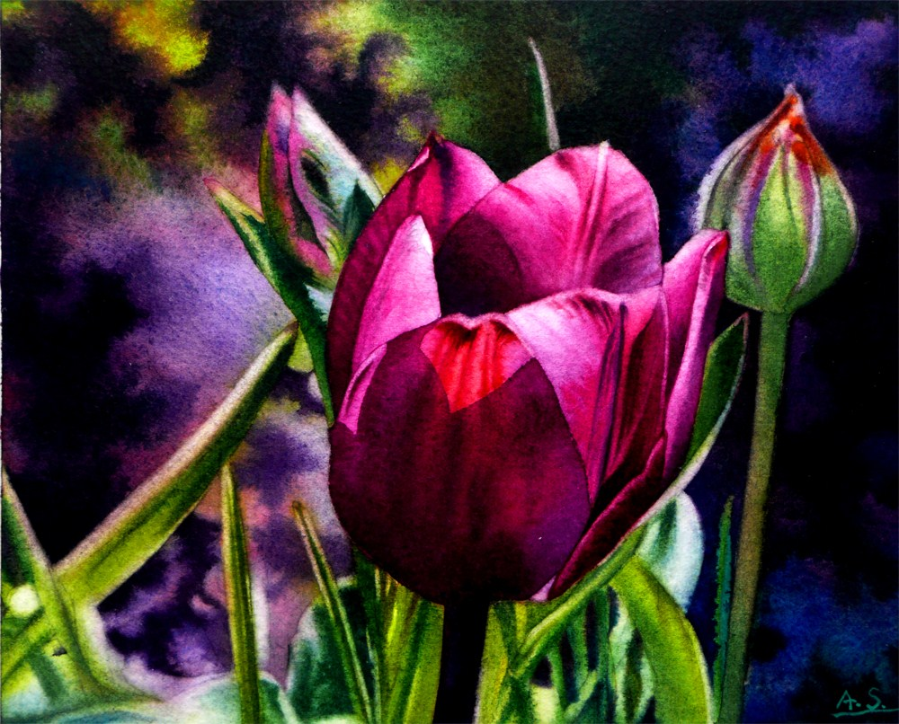 """Dancing Tulip"" original fine art by Arena Shawn"