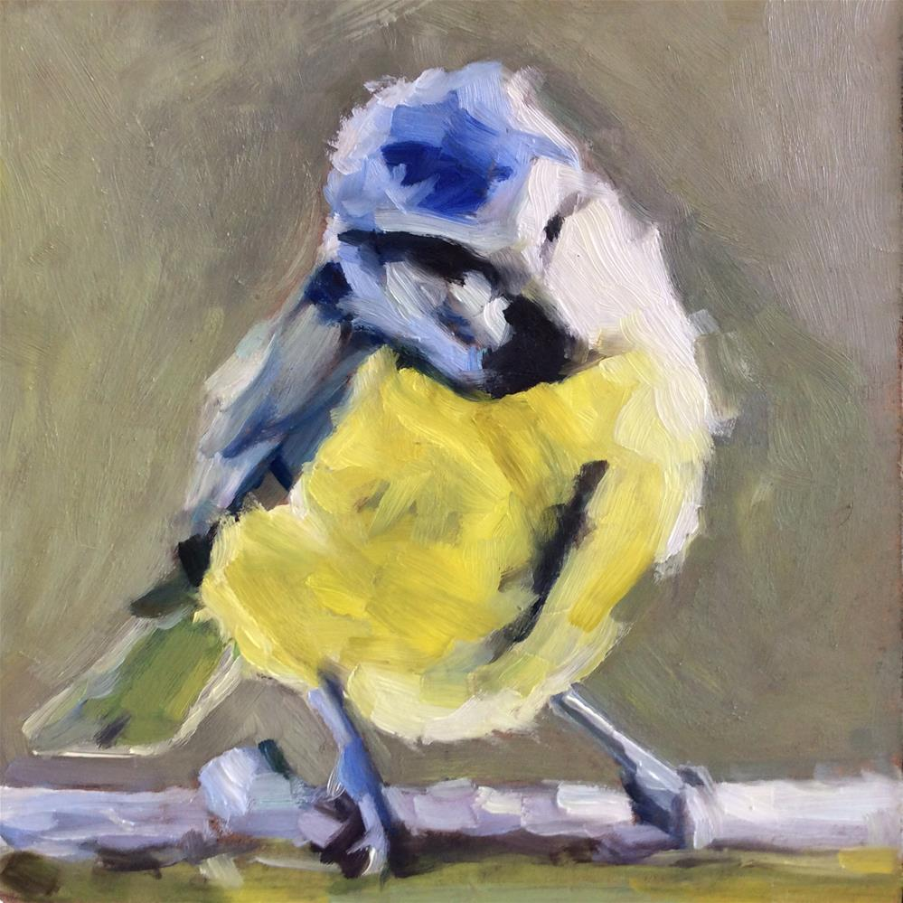 """Blue Tit"" original fine art by Paula Howson-Green"