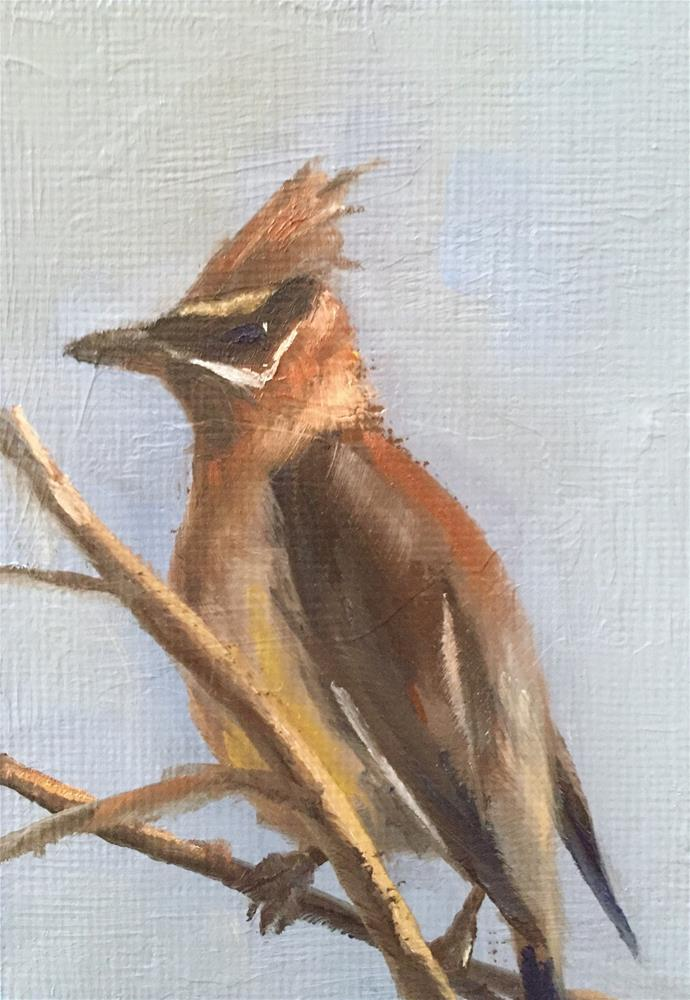 """Waxwing"" original fine art by Gary Bruton"